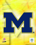 2009 University of Michigan Team Logo Photo