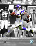 Adrian Peterson Foto