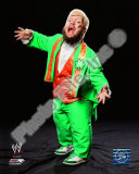 Hornswoggle Photo