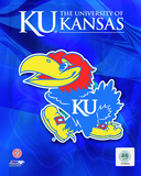 2009 University of Kansas Jayhawks Logo Photo