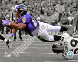 Ray Rice Fotografía