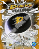 2009-10 Anaheim Ducks Team Logo Photo