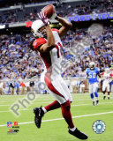 Larry Fitzgerald Photo