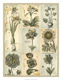 Botanical Patchwork I Giclee Print
