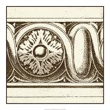 Sepia Detail V Print