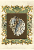 Mermaid's Shells I Posters by Chariklia Zarris
