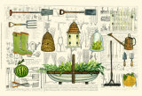 Garden Collection I Affiches par Ginny Joyner