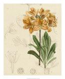 Floral Pairings III Giclee Print