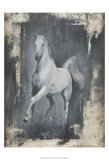 Running Stallion II Prints by Ethan Harper
