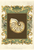 Mermaid's Shells II Posters by Chariklia Zarris