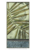 Sophisticated Palm II Prints by Jennifer Goldberger