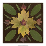 Kaleidoscope Leaves IV Posters