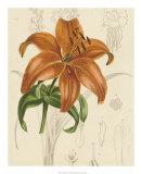 Floral Pairings IV Giclee Print