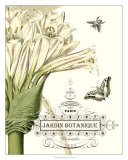 Jardin Botanique II Poster
