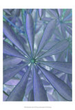 Woodland Plants in Blue II Posters by Sharon Chandler