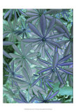 Woodland Plants in Blue IV Posters by Sharon Chandler