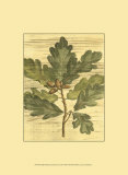 Weathered Oak Leaves I Poster by  Deshayes