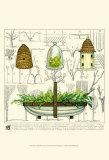 Garden Trug Print by Ginny Joyner