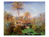 House Among the Palms, 1884 Giclee Print by Claude Monet