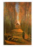 Poplar-Lined Path, 1884 Giclee Print by Vincent van Gogh