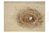 Nesting III Posters by Meghan McSweeney