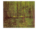 Trees and Undergrowth, 1887 Giclee Print by Vincent van Gogh
