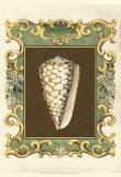 Mermaid's Shells VI Print by Chariklia Zarris