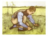 Cutting Grass with Sickle, 1881 Giclee Print by Vincent van Gogh