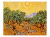 Sun over Olive Grove, 1889 Reproduction proc&#233;d&#233; gicl&#233;e par Vincent van Gogh