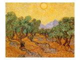 Sole sull'oliveto, 1889 Stampa giclée di Vincent van Gogh