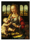 Madonna and Carnation, 1478 Giclee Print by  Leonardo da Vinci