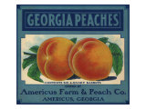 Georgia Peaches Giclee Print