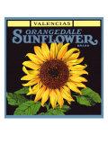 Sunflower Label Giclee Print