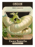 White Onion Seed Packet Giclee Print