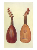 Rare Italian Lute, 1888 Giclee Print by William Gibb
