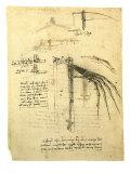 Flying Machine Part Giclée-Druck von  Leonardo da Vinci