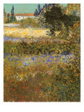 Flowering Garden, 1888 Giclee Print by Vincent van Gogh