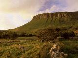 Benbulben, Approx 500M, at Sunset, Near Sligo, County Sligo, Connacht, Republic of Ireland, Europe Photographic Print by Patrick Dieudonne