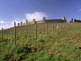 Monteriggioni, a Fortified Medieval Town with 14 Towers, Founded 1203, Near Siena, Tuscany, Italy Photographic Print by Patrick Dieudonne