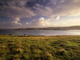 Bressay, Lerwick Town and Bressay Sound from Bressay Island, Shetland Islands, Scotland, UK Reproduction photographique par Patrick Dieudonne