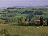 Landscape of the Crete Senesi Area, Southeast of Siena, Near Asciano, Tuscany, Italy, Europe Photographic Print by Patrick Dieudonne
