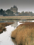 Castle and Marshes of Suscinio, Morbihan, Brittany, France, Europe Photographic Print by Patrick Dieudonne