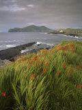 Lighthouse and Doulus Head, Valentia Island, Ring of Kerry, Co. Kerry, Munster, Republic of Ireland Reproduction photographique par Patrick Dieudonne