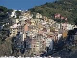 Riomaggiore, Cinque Terre, UNESCO World Heritage Site, Liguria, Italy, Europe Photographic Print by Robert Cundy