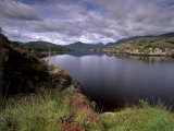View of Upper Lake, Lakes of Killarney, Ring of Kerry, County Kerry, Munster, Republic of Ireland Reproduction photographique par Patrick Dieudonne