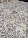 Mosaic from Labour of Hercules House, Volubilis, UNESCO World Heritage Site, Morocco Photographic Print by Ethel Davies