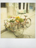 Polaroid of Tricycle Loaded with Flowers for Sale, Havana, Cuba, West Indies, Central America Photographic Print by Lee Frost