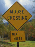 Close-Up of a Moose Crossing Yellow Road Sign, New England, United States of America, North America Photographic Print by Fraser Hall
