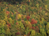 Aerial View over Autumnal Forest Canopy, Near Green Knob, Blue Ridge Parkway, North Carolina, USA Photographic Print by James Green