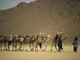 Tuareg People Leading Camel Train across Desert, Algeria, North Africa, Africa, Photographic Print